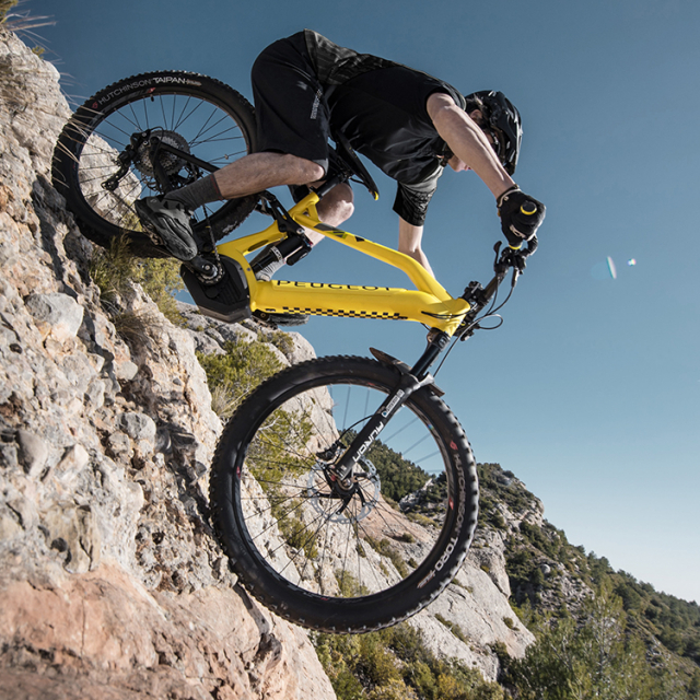 Mountain bike Powertube Peugeot