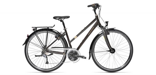 Mixte trekking bike T02 D9